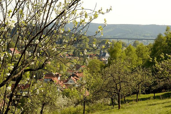 Albrechts im Frühling